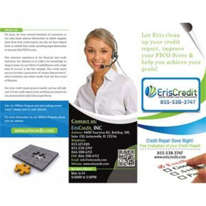 Brochure / Flyer Designing Services